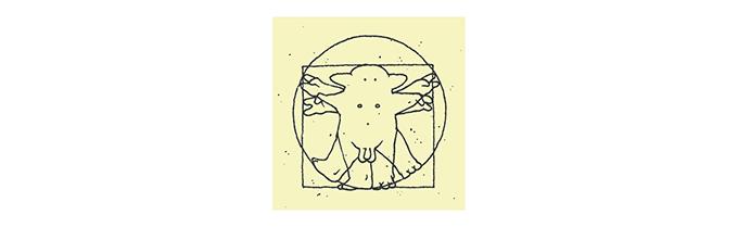 Vinci blog